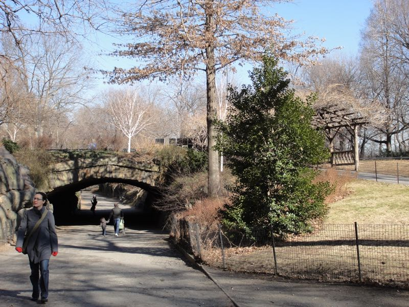 NYC_Central_Park_2