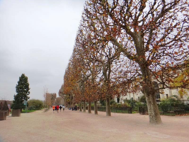 Paris_Passeios_Quartier_Latin_JardindesPlantes_01