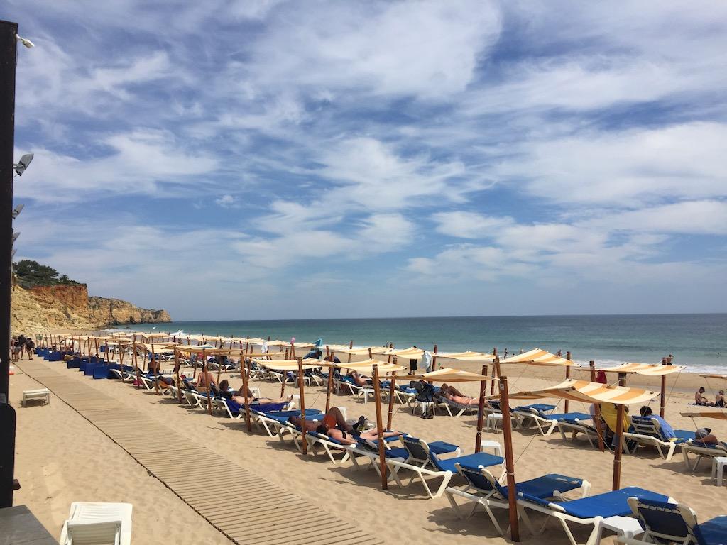 FPM_Algarve